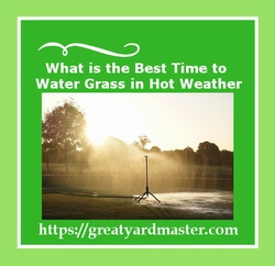 best time to water grass in hot weather
