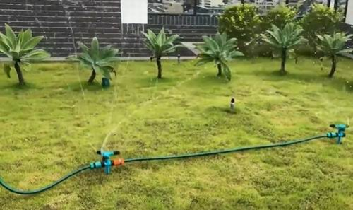 best time to water st augustine grass