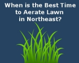 When is the Best Time to Aerate Lawn in Northeast?