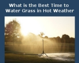 What is the Best Time to Water Grass in Hot Weather